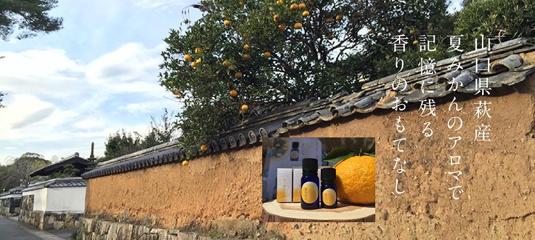 山口県萩産夏みかんのアロマで記憶に残る香りのおもてなし